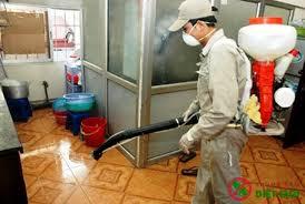 Dịch vụ phun thuốc muỗi tại nhà tỉnh Bắc GIang