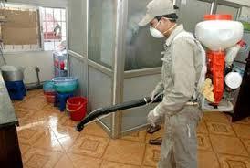 Phun muỗi tại nhà ở Hưng Yên