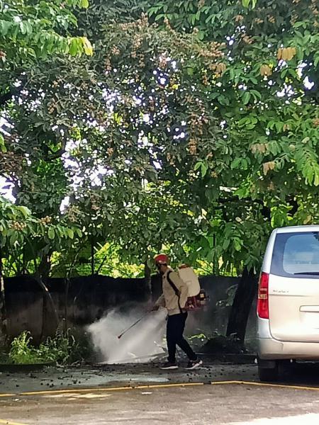 Công ty phun muỗi uy tín tại Thái Bình