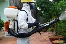 Công ty phun muỗi uy tín tại Hải Phòng