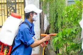 Dịch vụ phun thuốc muỗi chuyên nghiệp tại Lạng Sơn