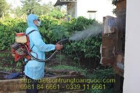 Công ty phun muỗi uy tín tại Hải Dương