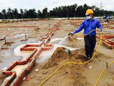  Dịch vụ phòng chống mối chuyên nghiệp tại Bắc Giang
