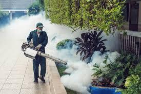 Dịch vụ phun thuốc muỗi chuyên nghiệp tại Bắc Ninh