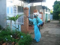 Phun muỗi tại nhà ở Hà Giang
