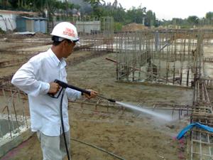 Công ty phòng chống mối uy tín tại Nam Định