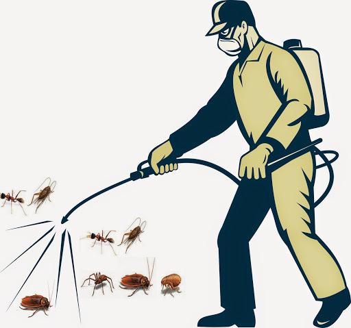 diệt côn trùng toàn quốc