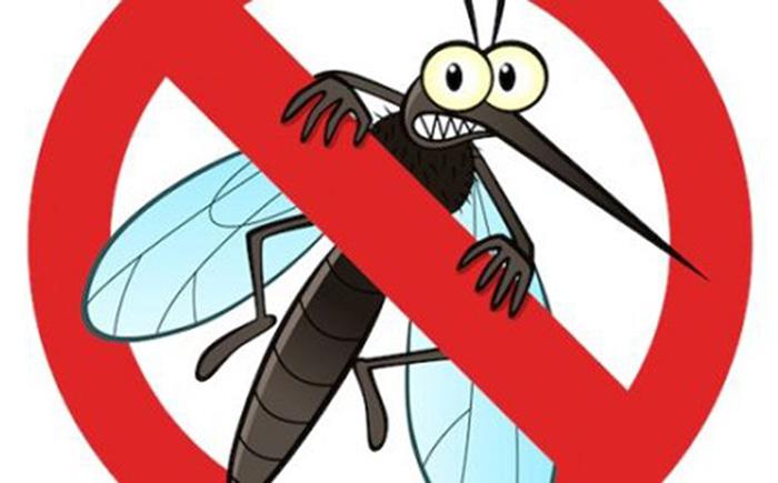 phương pháp diệt muỗi